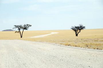 Namibia - Paesaggio