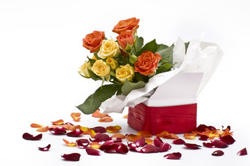 multicolored roses in white gift box