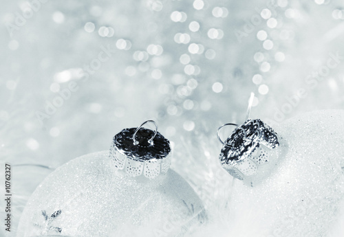 Frosted for Christmas © Ioana Davies (Drutu)