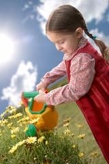 Beautiful child watering a daisy plant