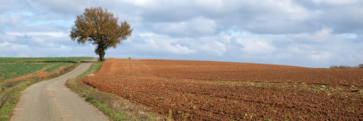 panorama de campagne