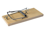 A Mousetrap on a white background, with clipping path. poster