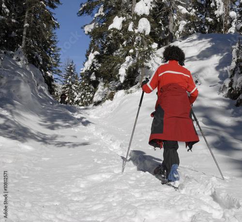 schnee schuh wandern