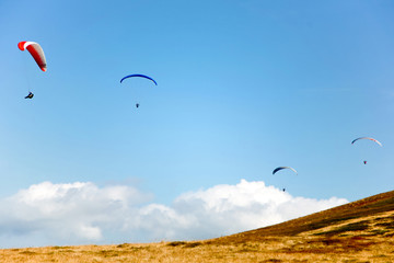 Four gliders