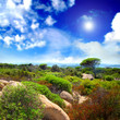 Mediterranean relaxing landscape