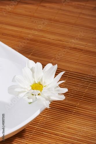 flowers spa - 10817505