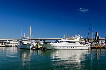 The yachts and boats in Miami harbor