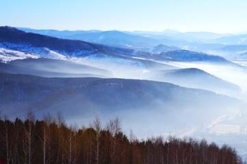 montane landscape
