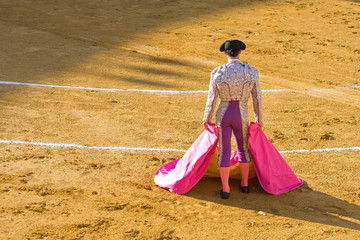 Torreador Waiting for the Bull
