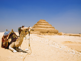 Great pyramid of Djoser in Saqqara