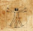 Leinwanddruck Bild - vitruvian man