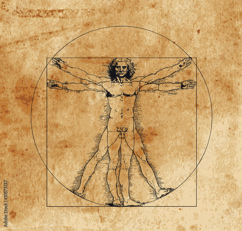 Leinwanddruck Bild vitruvian man