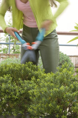 Woman pruning a bush