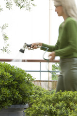 Woman watering bushes