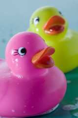 2 rubber ducks, close-up