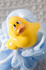 Rubber duck on mesh sponge, close-up