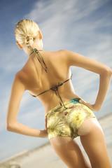 Young woman in bikini standing on beach, rear view