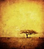 Fototapeta pejzaż - tekstura - Ogólny widok