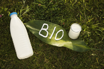 "Milk bottle, yoghurt, and ""BIO"" lettering on a leaf, on the grass"