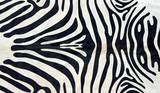 Afrika  - Im Land der wilden Tiere poster