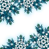 Cornice vettoriale di abete blu #4 poster