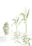 Zen Stones and Bamboo Grass
