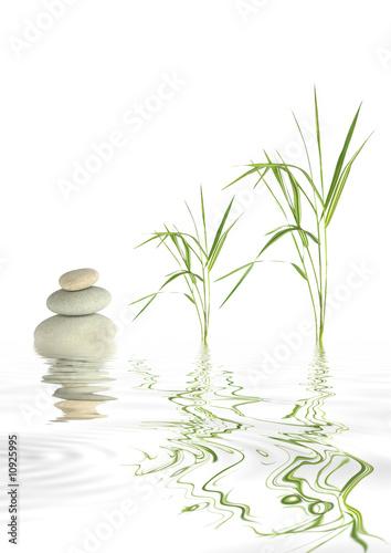 Fototapeta Zen Stones and Bamboo Grass
