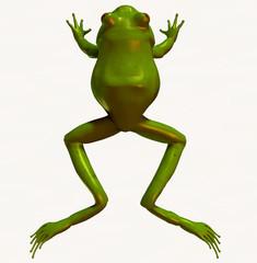 frog 3d top