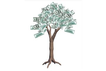The dollars tree