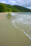 Plage de Cape Tribulation 1