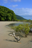 Plage de Cape Tribulation 2