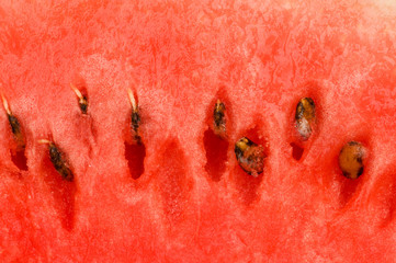 Extreme close up of the red watermelon