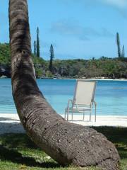 détente sur la plage des cocotiers en nouvelle calédonie