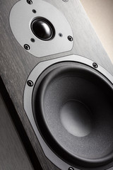 Hi-Fi Acoustic System Close-up (Dark Oak texture)