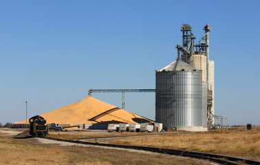 Rural grain elevator with overflow corn pile