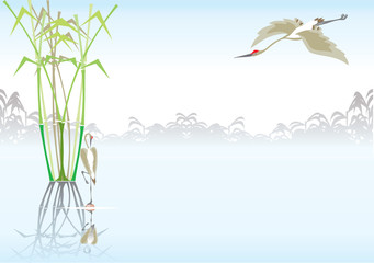 Tropic cranes and bamboo. Background