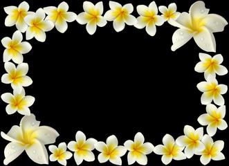 bordure fleurie sur fond noir