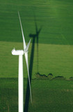 overview of windturbine and green meadow