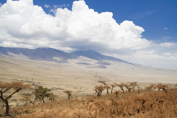 Africa Ngorongoro