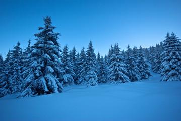 neige belledonne