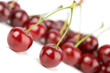 cherries solated
