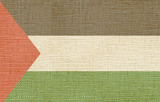 flag of palestine canvas