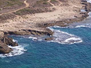 Wild rocky seashore landscape