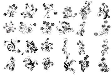 multifloral noir et fleurs