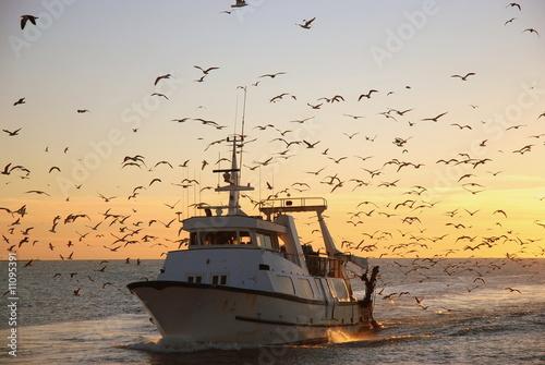 Retour de la pêche - 11095391