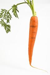 carota con ciuffo verde