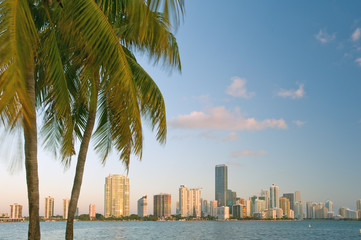 miami bayfront skyline at dawn