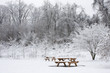 Two Picnic Benches in Snow