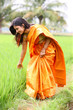 woman walking in the paddy field