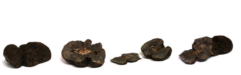 truffes d'hiver